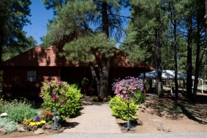 flagstaff wedding venues