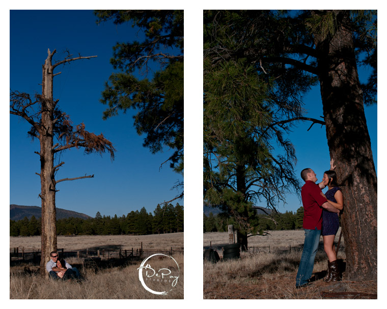 Flagstaff wedding photographer, Flagstaff wedding photography, Flagstaff, Snowbowl, Photographer, wedding, engagement